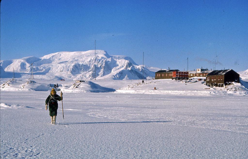 Antarctic cruises
