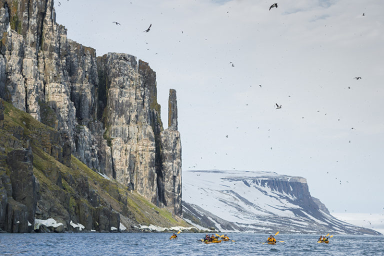 Kayaking in front the bird cliff with hundred thousands of Brunich's guillemots at Alkefjellet.