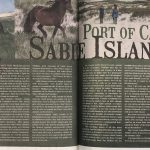 Sable Island article