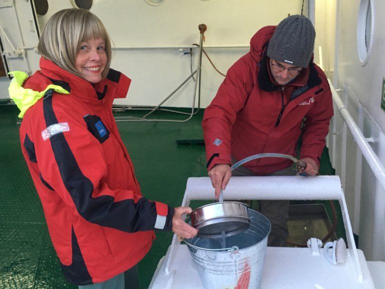 arctic, microplastics, oceanwise