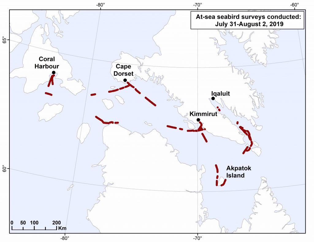 Arctic birds survey map