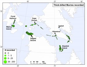 Locations of the seabird surveys conducted.